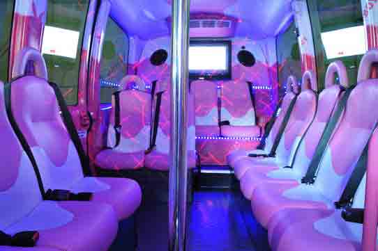 Partybus mit Stripperin Berlin